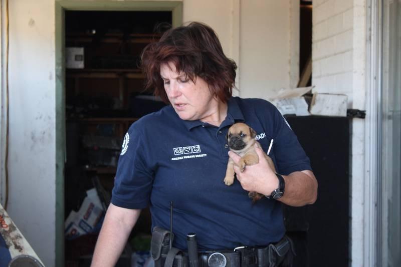 Tierpolizei Phoenix