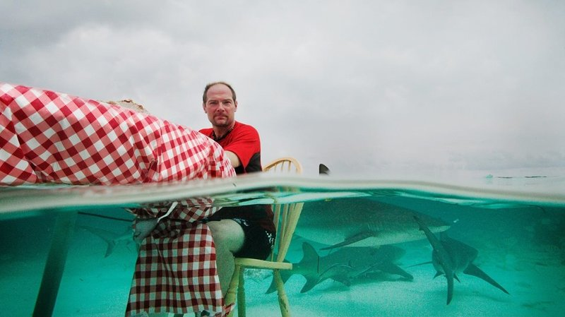 Shark Week – Bild: S1