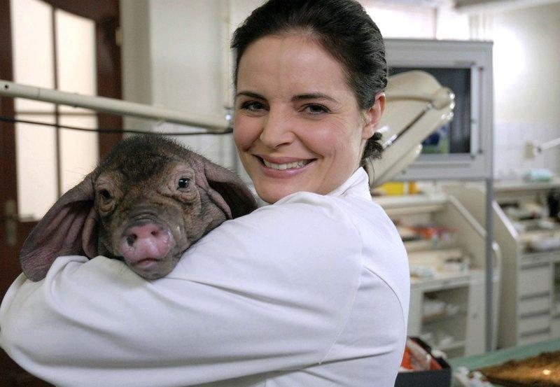 Dr. Susanne Mertens (Elisabeth Lanz) mit ihrem kleinen Schweine-Patienten. – Bild: ARD/BR/Christa Köfer