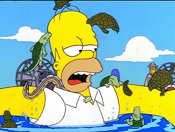 Homer erleidet einen Nervenzusammenbruch. Zur Erholung wird er nach Florida geschickt. Statt sich zu kurieren, stürzt sich Homer ins Vergnügen. Wegen seiner Eskapaden landet die ganze Familie Simpson im Gefängnis. Im Bild: In einem Nationalpark stürzt Homer sich unbekümmert in einen Tümpel. – Bild: ORF