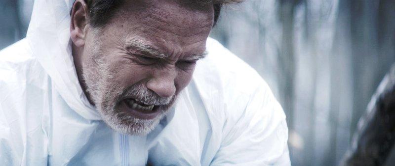 Arnold Schwarzenegger (Roman). – Bild: ORF
