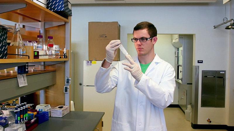 An der staatlichen Universität von Utah arbeiten Wissenschaftler an der Entwicklung eines Stoffs, der als eine Art künstliche, extrem robuste Haut dienen soll. Gewonnen wird dieser aus Spinnenseide. – Bild: N24