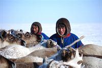 Abenteuer Sibirien – Bild: arte