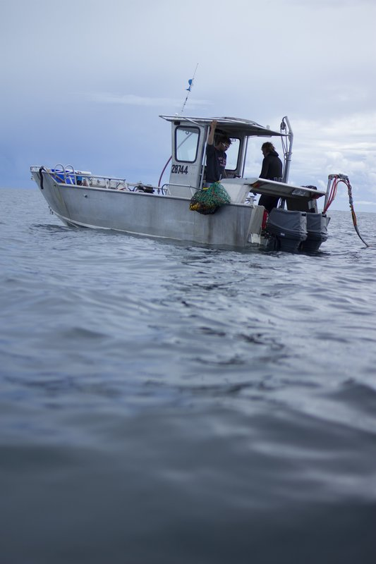 Greg Pickering and Neil Rodd are on a boat. – Bild: International Netowkrs / Discovery Communications
