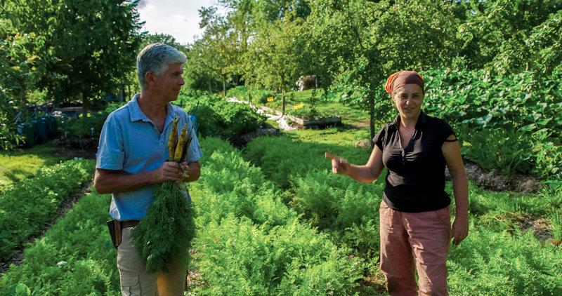 Im Bild: Charles und Perrine Hervé-Gruyer betreiben sehr erfolgreich in der Normandie die Farm Bec Hellouin nach dem Prinzip der Permakultur. – Bild: ORF / Pandora Film