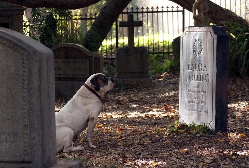 Als Walter den widerspenstigen Hund auf der Strasse entdeckt, verfolgt er ihn bis zu einem Friedhof, wo dieser sich neben einem Grab niederlässt. Von dem Pfarrer erfährt er, dass es das Grab eines 23-jährigen Mädchens ist, welches vor langer Zeit auf seltsame Weise verschwand - bis zum gegenwärtigen Tag blieb ihre Leiche verschwunden ... – Bild: 2007 Warner Brothers Lizenzbild frei