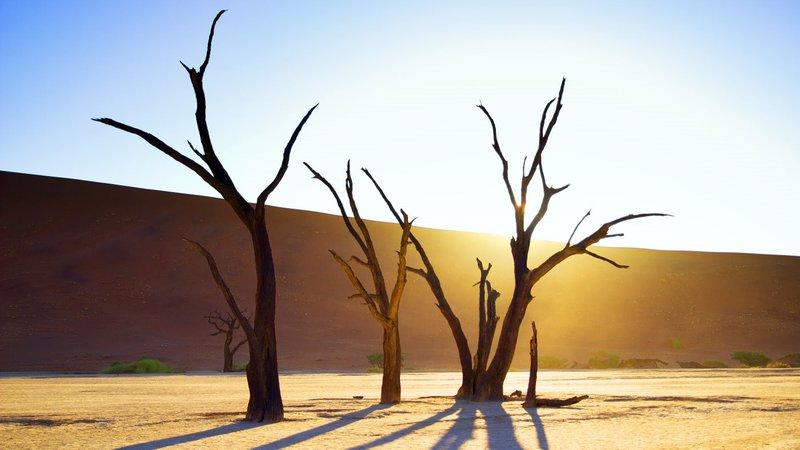 Sandwüste in Namibia (Sossusvlei)SandwĂĽste in Namibia (Sossusvlei) – Bild: RTL Zwei