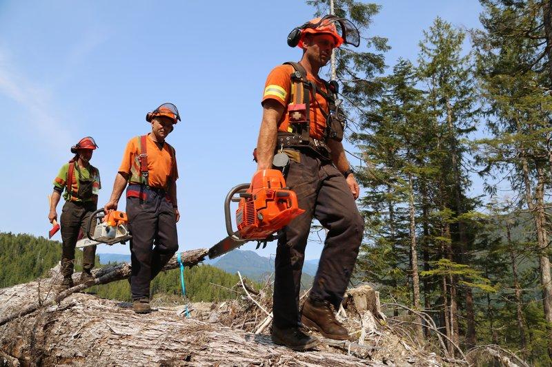 Die Nerven der Holzfäller liegen blank. Werden die Jungs von Lemare Lake Logging dem enormen Leistungsdruck standhalten und sich im Wettstreit gegen die anderen behaupten können? – Bild: 2012 A+E Networks. All rights reserved. Lizenzbild frei