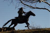 Der Mongole – Bild: ProSieben MAXX