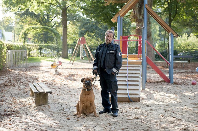 Paul Dänning (Jens Münchow) sammelt auf dem Spielplatz einen streunenden Wachhund auf und legt ihm einen Maulkorb an. – Bild: ARD/Thorsten Jander
