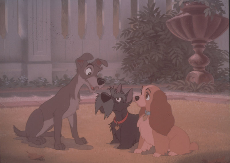 From left: Strolch, Jock and Susi – Bild: DISNEY CHANNEL