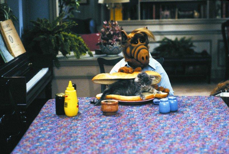 Alf und Lucky – Bild: RTL NITRO