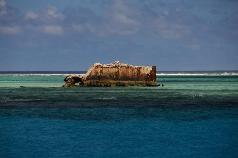 Nuclear Sharks – Haie im Bikini-Atoll (Staffel 29, Folge 11) – Bild: Discovery Channel / Discovery Communications