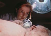 Scully (Gillian Anderson) entdeckt an der Leiche des Erschossenen, dass dem Mann schon Tage vor seinem Tod ein geheimnisvolles Gift in die Wirbelsäule injiziert wurde. – © TM + © 2000 Twentieth Century Fox Film Corporation. All Rights Reserved. Lizenzbild frei