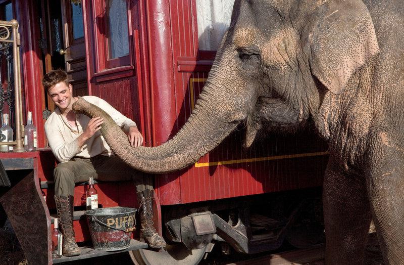 Eine Freundschaft fürs Leben: Elefantendame Rosie und Jacob (Robert Pattinson), ihr Freund, Pfleger, Erzieher und Beschützer. – Bild: ZDF und David James