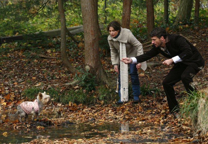 Lina (Julia Brendler) und Markus (Stephan Luca) müssen dem Hund eines wichtigen Sponsors das Leben retten. – Bild: SWR/ARD Degeto/Erika Hauri
