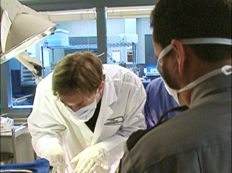Autopsie Sendetermine