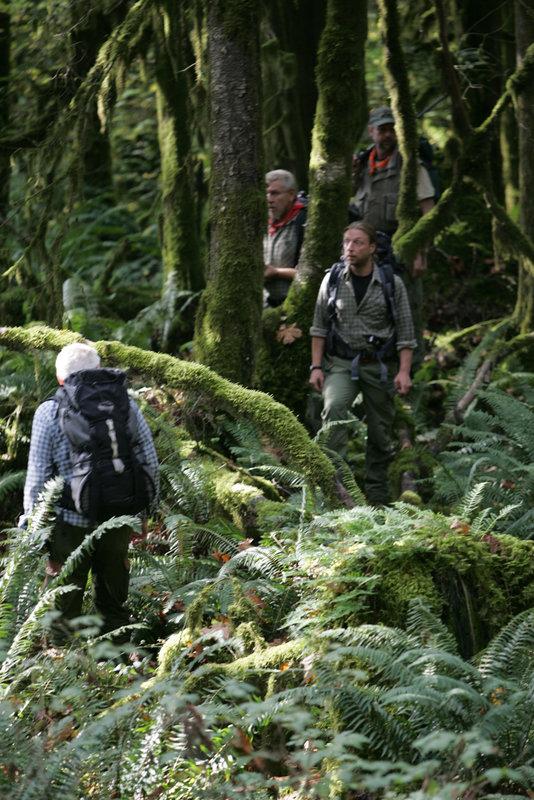 Das Expeditionsteam kämpft sich auf den Spuren Slumachs durch den Urwald British Columbias. – Bild: ZDF und Hanno Gerken