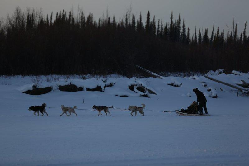 Tyler Selden running the dogsled team. – Bild: Discovery Communications