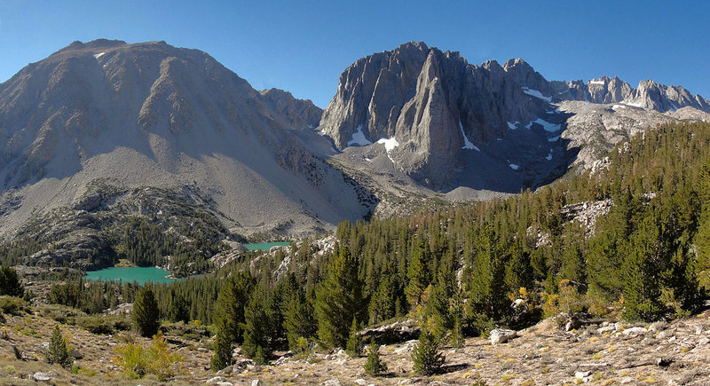 Subalpine forest at the base of Temple Crag – Bild: Wikimedia Foundation, Inc.,