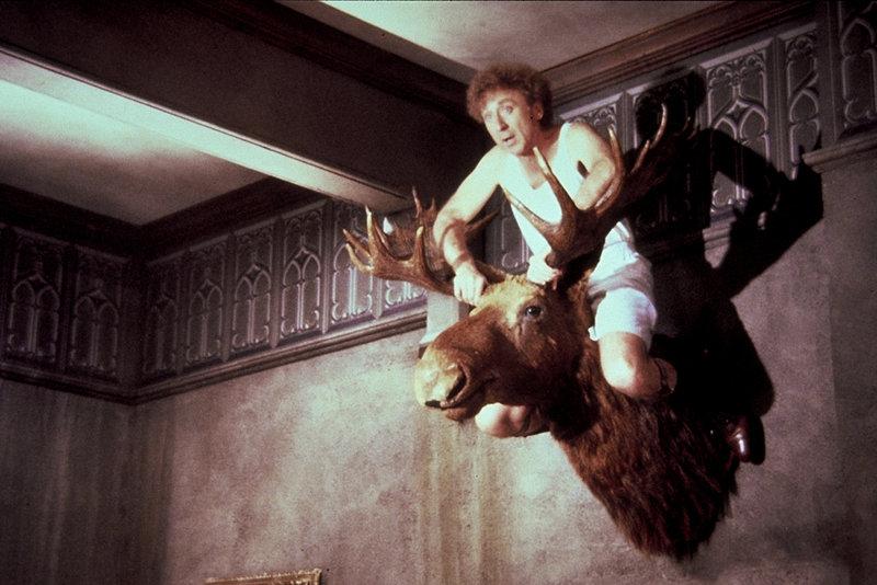 Larry (Gene Wilder) wird nach allen Regeln der Kunst in Angst und Schrecken versetzt ... – Bild: Orion Pictures Corporation Lizenzbild frei