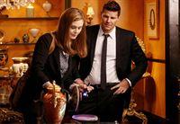 Brennan (Emily Deschanel) und Booth (David Boreanaz) finden heraus, dass das Opfer mit einem seltenen Kunstgegenstand erschlagen wurde. – © RTL