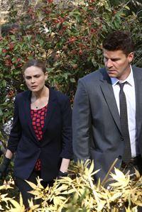 Brennan (Emily Deschanel) und Booth (David Boreanaz) finden heraus, dass das Opfer Abby Briggs Marihuana-Pflanzen gezüchtet hat. – © RTL