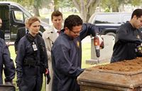 Brennan (Emily Deschanel) und Booth (David Boreanaz, 2.v.l.) lassen die Leiche von Maya Zinkow exhumieren. – © RTL