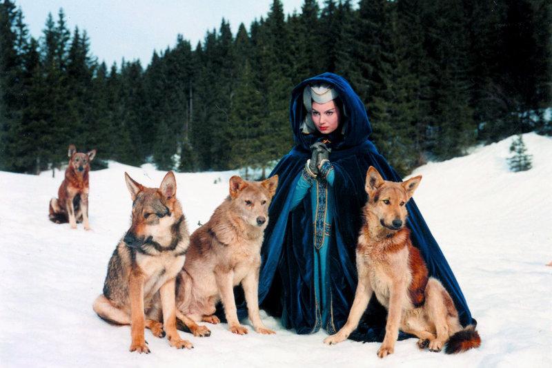 Auf der Flucht vor den Verfolgern des Herzogs von Burgund trifft Jeanne de Beauvais (Rosanna Schiaffino) in den Wäldern auf ein Wolfsrudel. – Bild: ARTE / © 1961 Pathé Films/DAMA
