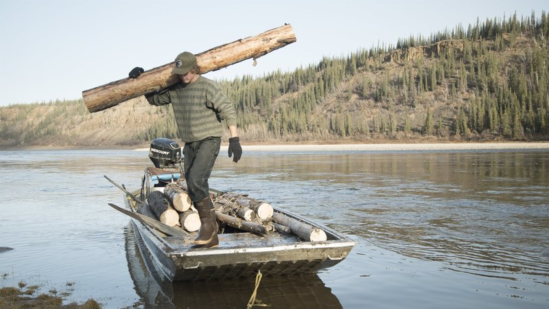 Charlie hauls a log. – Bild: Discovery Channel / Discovery Communications