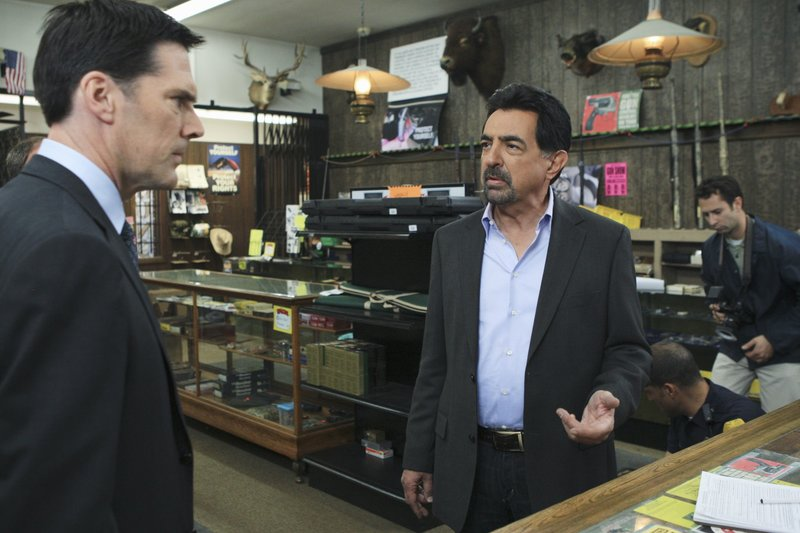 Criminal Minds Staffel 6 Episodenguide Fernsehseriende