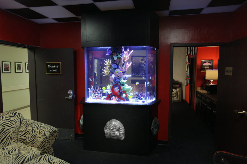 die aquarium profis staffel 5 episodenguide. Black Bedroom Furniture Sets. Home Design Ideas