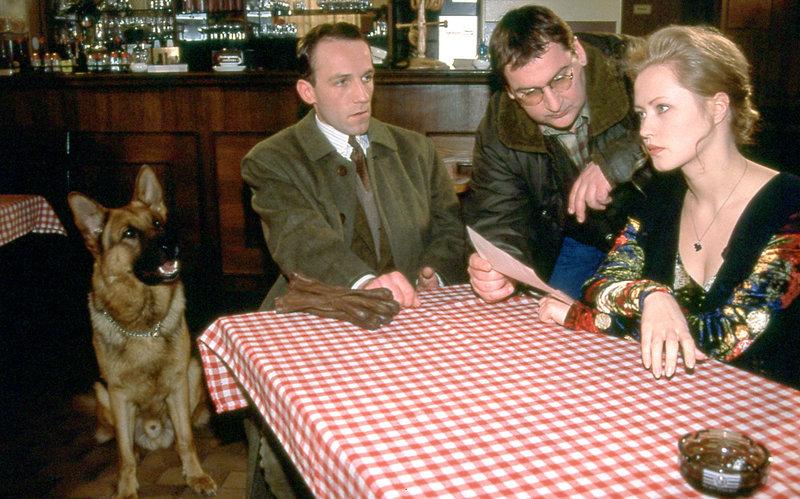 Rex, Ernst Stockinger (Karl Markovics, li.) und Peter Höllerer (Wolf Bachofner, mi.) befragen Irina (Agnieszka Wagner, re.) zum Mord an ihrem Mann. – Bild: ORF2