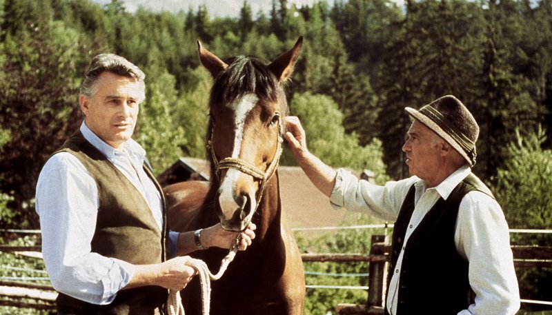 Klaus Wildbolz (Markus Graf von Brauneck), Walther Reyer (Dr. Pankraz Obermayer) Markus von Brauneck macht sich Sorgen um sein krankes Pferd und wendet sich an den erfahrenen Pankraz. – Bild: rbb