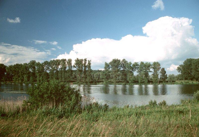 Altrheinarm bei Xanten – Bild: NDR