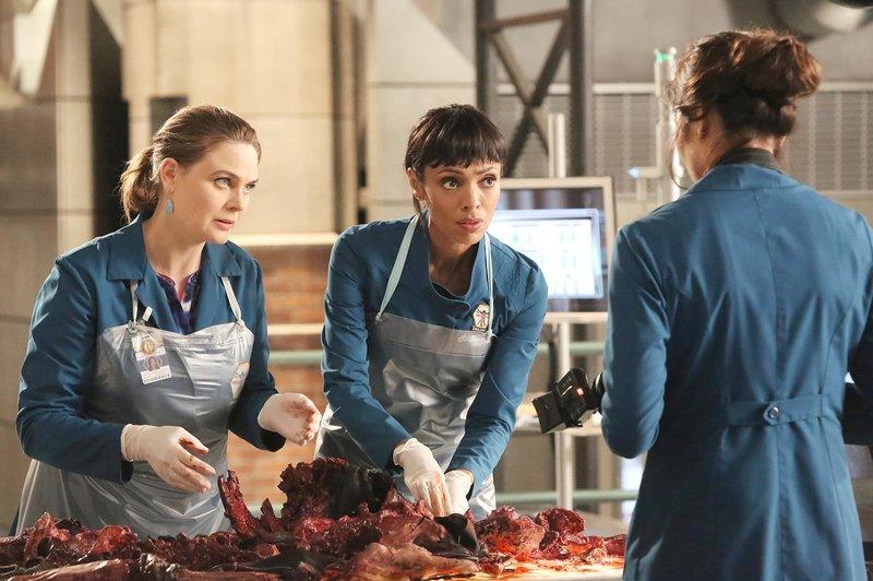 Emily Deschanel, Tamara Taylor, Michaela Conlin – Bild: M6
