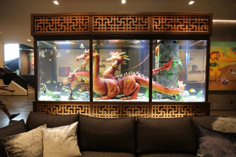 Steve Aoki's finished tank in his home. – Bild: Animal Planet / Discovery Communications