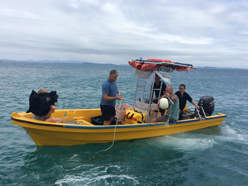 Shark scientist Dr Will Robbins, ex-Navy diver Paul De Gelder, and Dr Jodie Haig prepare for the very first shark translocation in Australia. – Bild: Discovery Channel / Discovery Communications