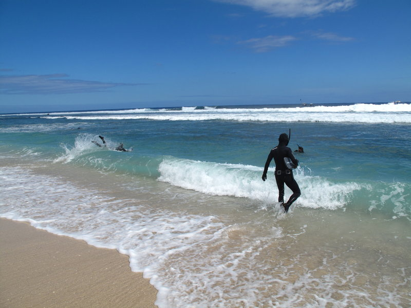 Divers going into water at the beach. – Bild: Discovery Networks