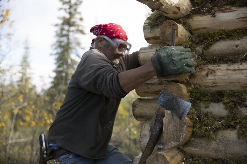 Heimo working on his wood cabin. – Bild: Animal Planet / Discovery Communications