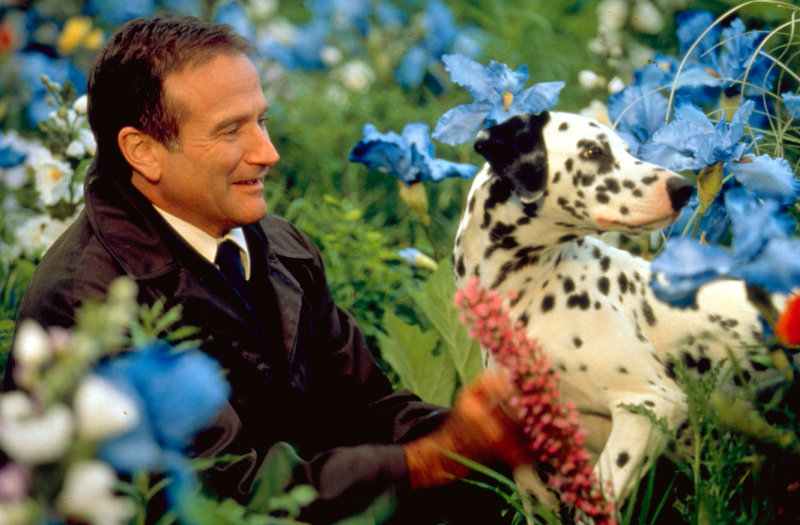 NELLA FOTO: ROBIN WILLIAMS – Bild: RTL II