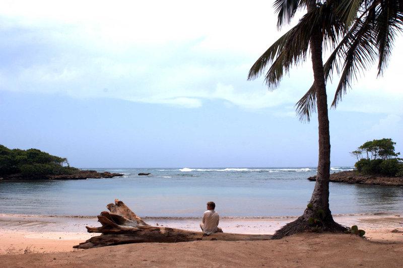 Der Rockstar Jason Masters (Chris Carmack) strandet auf einer einsamen Insel. Was er nicht weiß: Die Insel ist nicht so einsam, wie er glaubt ... – Bild: Media 8 Entertainment Lizenzbild frei