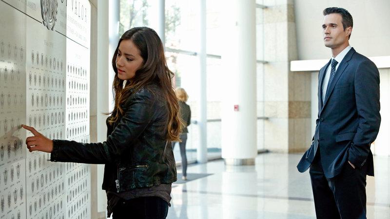 Skye (Chloe Bennet) und Agent Ward (Brett Dalton) an der Ehrentafel in der S.H.I.E.L.D.-Akademie – Bild: RTL II
