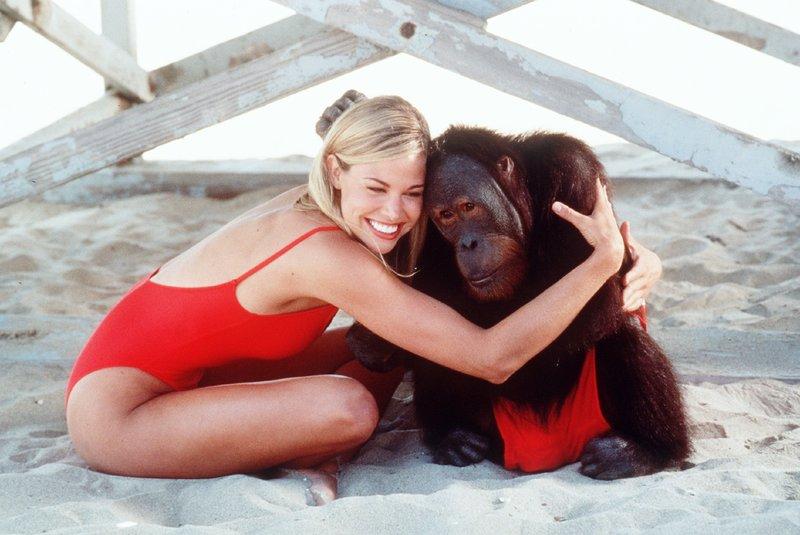 Jessie (Brooke Burns) mit Orang-Utan Morton – Bild: Nitro.