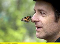Butterfly Stories – Bild: hr-fernsehen