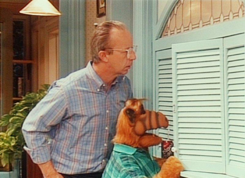 Gespannt verfolgen Willie (Max Wright, l.) und Alf (r.) heimlich das Versöhnungsgespräch der Ex-Eheleute Neal und Margaret. – Bild: TM+© Warner Bros. Lizenzbild frei