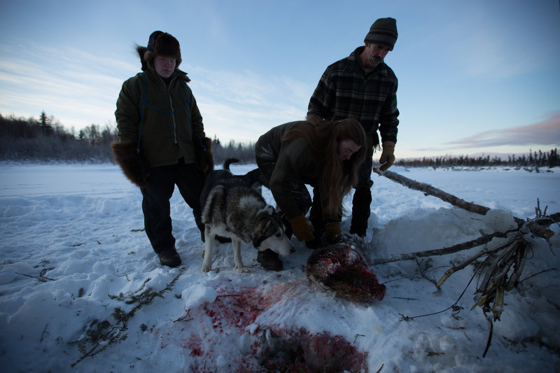 Ray Lewis, Sarah Lewis and Molly Lewis retrieve beaver trapping from river. – Bild: Animal Planet / Discovery Communications