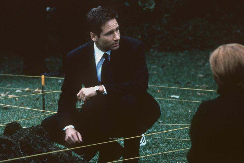 Mulder (David Duchovny, M.) sucht im Garten eines Verdächtigen nach einer vergrabenen Babyleiche. – Bild: TM + © 2000 Twentieth Century Fox Film Corporation. All Rights Reserved. Lizenzbild frei