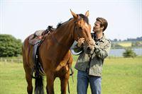 Sein Pferd Paul ist für den jungen Arzt Dr. Bergmann (Wayne Carpendale) nicht nur ein treuer Begleiter, sondern auch ein wertvoller Besitz. – © ZDF und Christine Schroeder