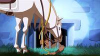 """""""Lenas Ranch"""", """"Das verbotene Rodeo."""" Zufällig werden Lena und ihre Freunde Zeugen, wie Wilderer eine Stute betäuben und wegschaffen. Während Lena und Anna das zurückgelassene Fohlen versorgen, folgt Angelo den Männern auf ein entlegenes Gut. Dort werden zum Entsetzen der Kids illegale, tierquälerische Rodeos durchgeführt. Ehe die Freunde sämtliche Pferde befreien können, werden sie entdeckt und geraten in die Hände der Wilderer. Hilflos sollen sie nun mitansehen, wie als nächstes Lenas Pferd Mistral beim Rodeo geritten wird.   – © ORF eins"""